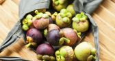 All About Mangosteen