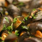 Fresh as you can get - spicy mussels