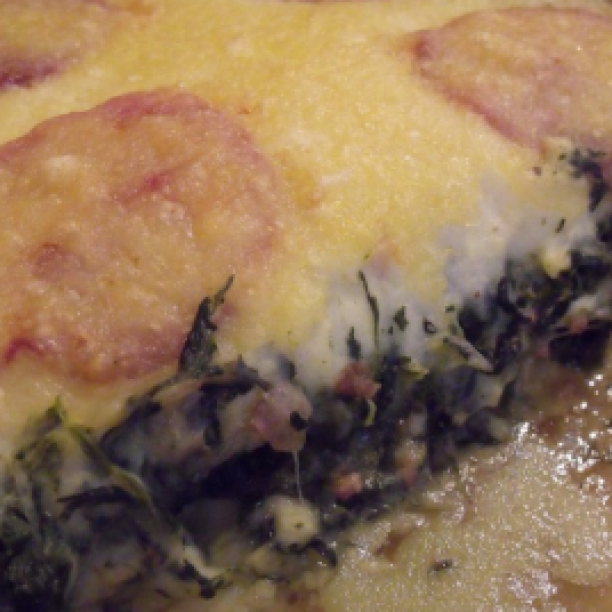 Gratin of potatoes and spinach