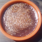Easy chocolate creme brulee