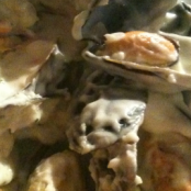 Mussels in cream and white wine sauce